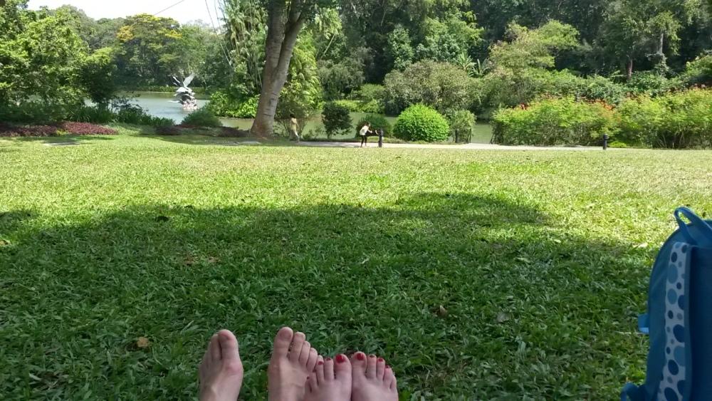 Praised Botanic Gardens (6/6)