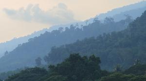 Malesia_2015_Langkawi_viidakkomaisema2_w